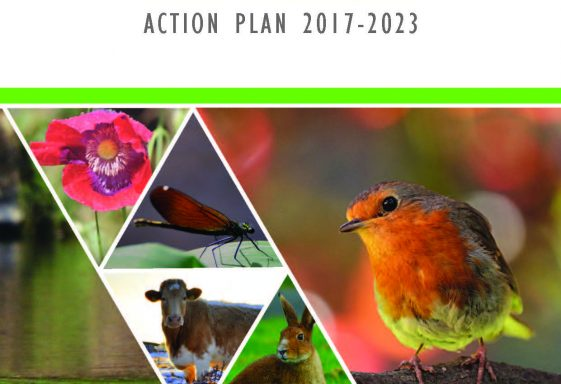 The County Clare Biodiversity Plan 2017-2023