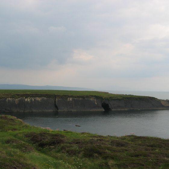 Horse Island | ClareCoCo