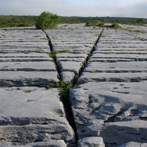 The Burren Limestone Pavement | ClareCoCo