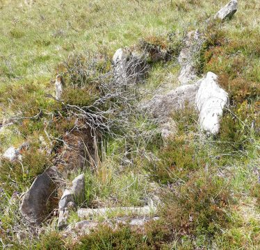 Cist grave near Bohatch wedge tomb  | Denis Sweeney