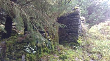One of the many ruined houses in the forestry | Ragna Gruendler 2019
