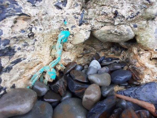 Rope trapped in newly formed tufa, Spanish Point, Co. Clare   Susan Powell 2020