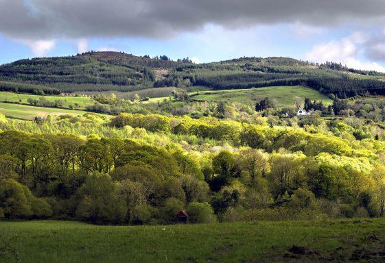 The Knockanuarha 12 O'Clock Hills