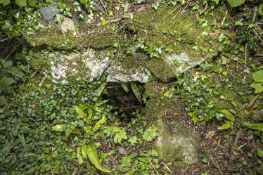 Tobermacduagh Holy Well Stones and Greenery in foreground | James Feeney