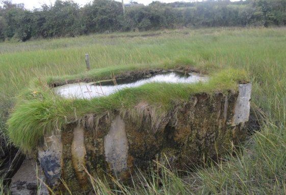 Saint Senan's Well, Termon East