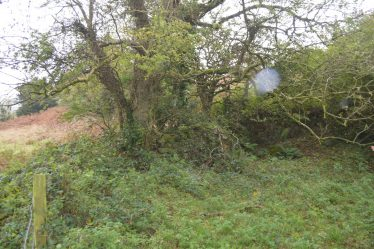 Site of Tobermochulla, Kilseily   James Feeney