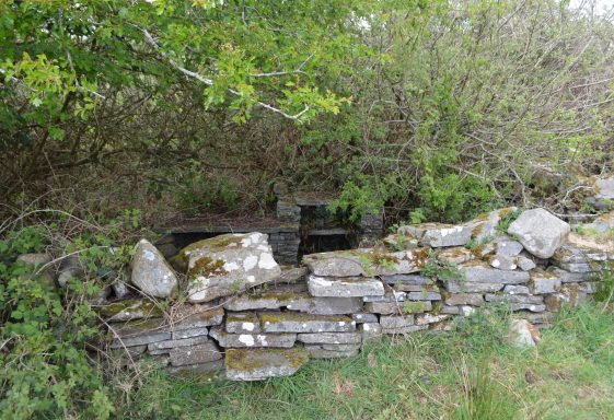 Saint Connellan's Well, Doonogan Holy Well