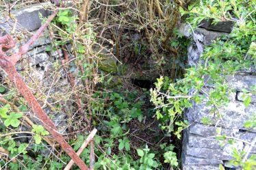 Saint Brendan's Well, Tobar Bhreandáin | James Feeney