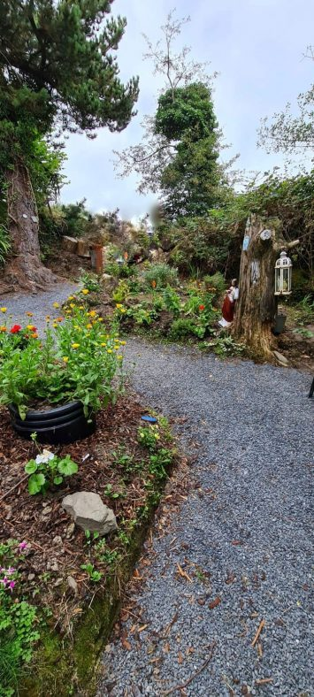 Saint Augustine's Holy Well, Garrynagry | James Feeney