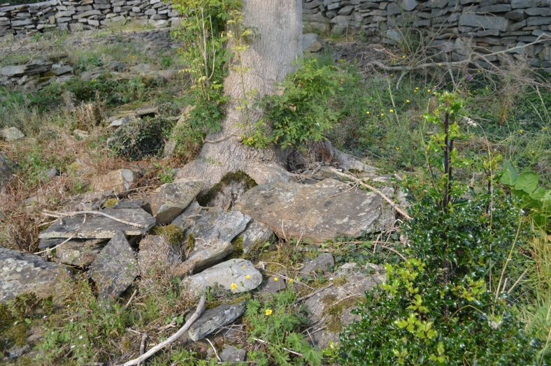 Possible site of The Witch's Well, Clondrina | Michael Houlihan