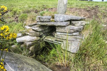 Saint Corcoran's Well, Kilcorcoran | James Feeney