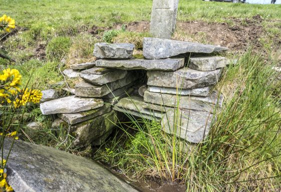 Saint Corcoran's Well, Kilcorcoran