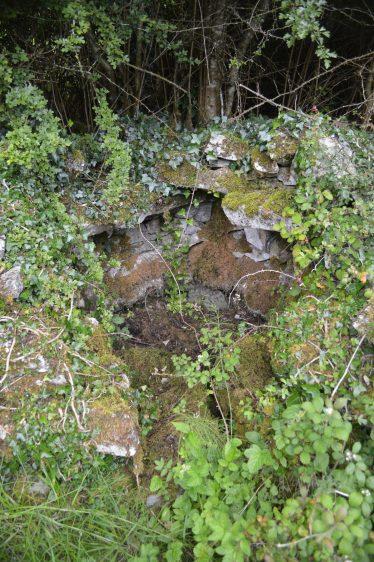Toberdoran, Saint Dooran's Holy Well, once known as Saint Breckan's Well   James Feeney