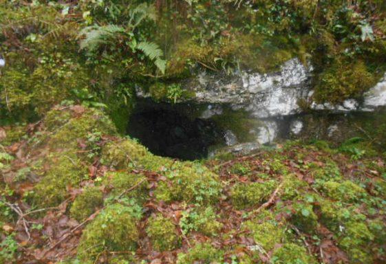 Bullán Phádraig, Saint Patrick's Well, Poulnalour