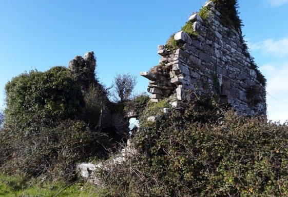 Saint Brecan's Well,Tobar Briocáin, Toomullin