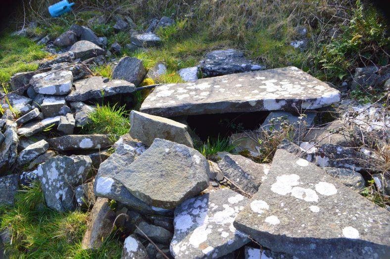 Kilfearagh Holy Well, Tobar Fiachra | James Feeney